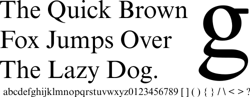 A sample of the typeface known as Times New Roman.