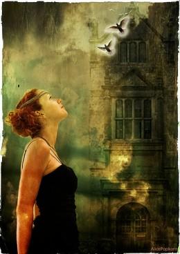 birds of hope from Cornelia Kopp  flickr.com