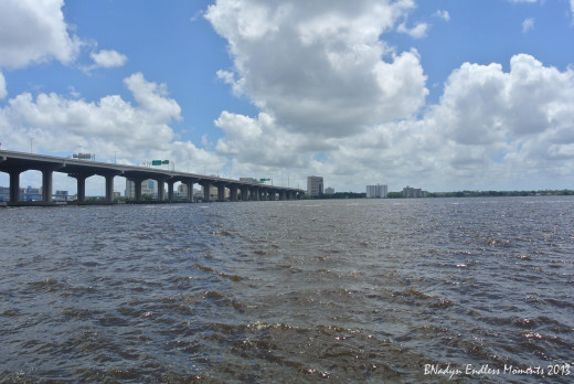 St. Johns Rivers stretches 310 miles making it Florida's longest river