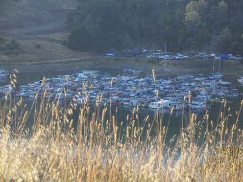 Lake Sonoma Marina from the mountaintop.