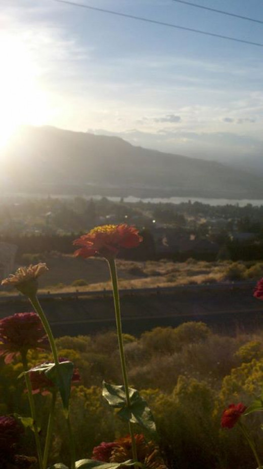 Wenatchee has so much beauty to enjoy, it's no wonder the top things to do include scenic views.