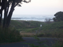 Camping on the Northern California Coast - MacKerricher State Park