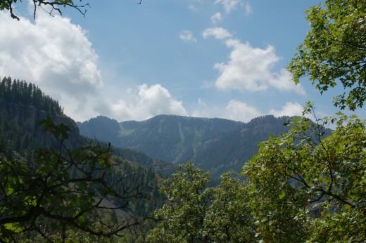 Wasatch MountainsUinta-Wasatch-Cache National Forest, Mount Naomi Wilderness
