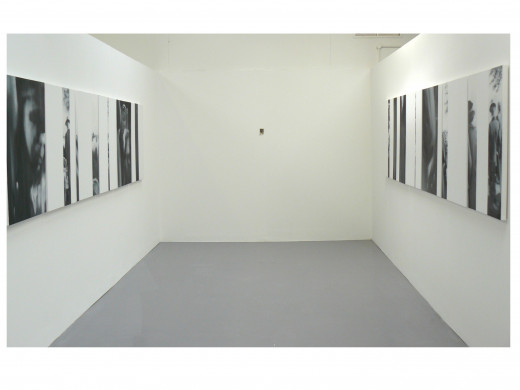 The work in an exhibition: the project-inspiring photograph is placed on the far wall, to inform the art work.