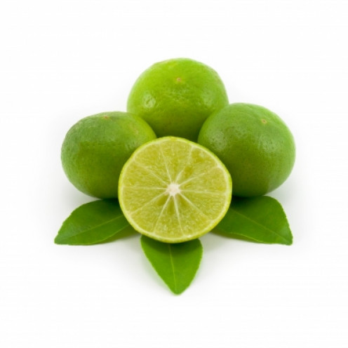 lime is sunsensitive so take care when spending extended periods in direct sunshine
