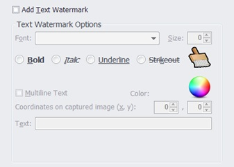 SCU Pro text watermark options