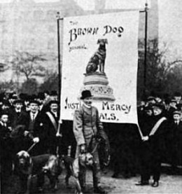 Animal Rights Protest - includes Major Richardson an army dog trainer