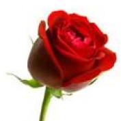 Nayana1 profile image
