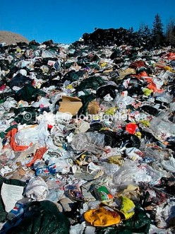 This is only one example of a landfill...disgusting! Photo courtesy of John Fowler