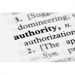 What is an Authority Site?