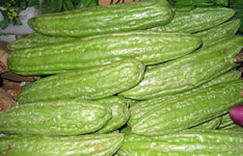 Chinese vatiety - Ampalaya or Bitter Fruit
