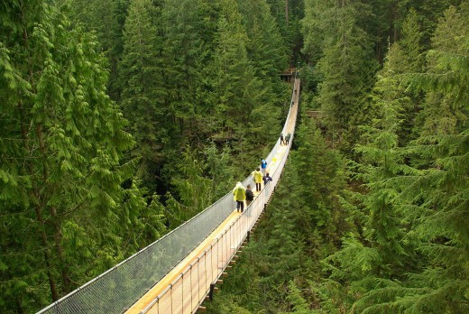 Visitors walking across the heart-stopping 230-foot high suspension bridge.
