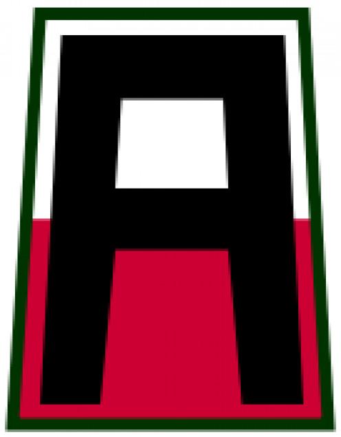 U.S. First Army patch
