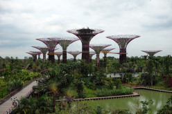 Gardens by the Bay: Singapore's garden city