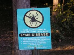 Lyme is all over! Consider testing if you have symptoms after spending time outdoors.