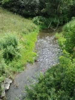 Rain swollen stream near my home