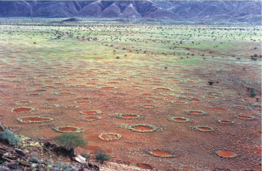 The fairy circles were believed to have magical powers by the Himba and bushmen thought they were made by spirits