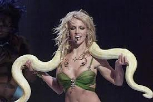 Brittany will do anything to entertain the fans including dance and sing with a Python.