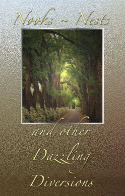 Nooks, Nests & other Dazzling Diversions