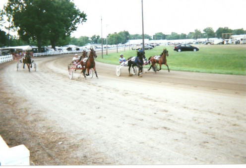 Harness racing is one of the oldest and most popular events at the annual Henry County Fair in Napoleon, Ohio. Its two-day sanctioned racing brings in Standardbreds from several states each year.