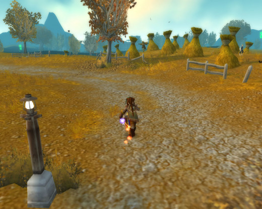 A lot can be accomplished in your character's first 20 levels of World of Warcraft!