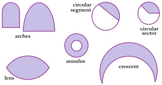 Arches, sectors, segments, lenses, annuluses, and crescents.