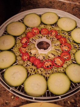 Zucchini and Peppers on Dehydrator Tray