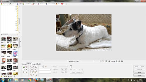 This is how the image looks after I have gone to my photo editing software and used the CTRL and V option to pste it