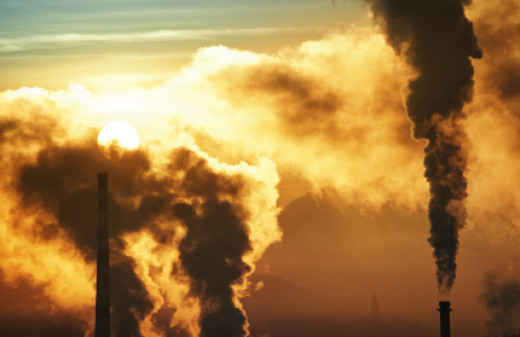 Industrialization steamed economies while creating a chain reaction of irreversible side effects.