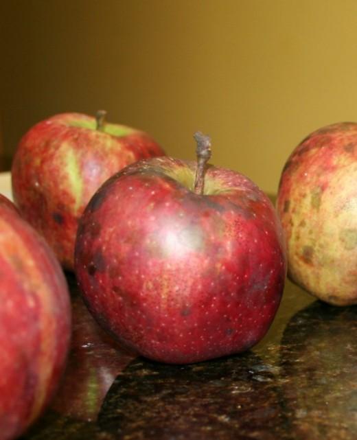 Organic Lodi apples from my garden.