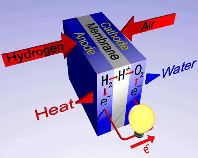 Reaction happening in a fuel cell