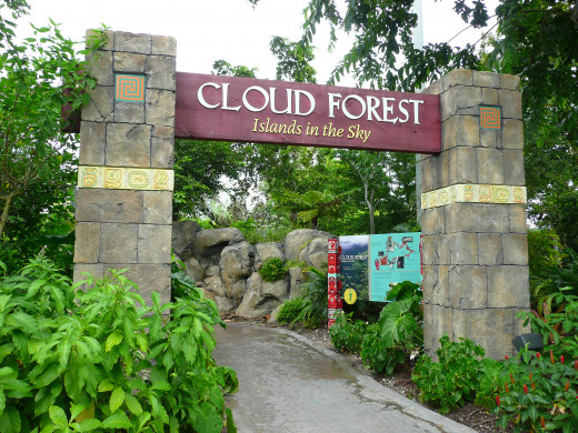 Cloud Forest  demarcaton of the Miami Zoo.