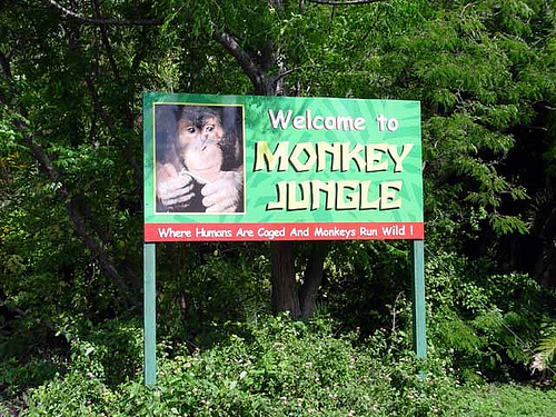 The Welcome Sign at Monkey Jungle in Miami. The Monkey Jungle's manmade  Amazonian Rainforest transformed into a different eco system resembling the real Amazon Forest. It receives rain all year round. Hurricane damage that needs to be repaired.