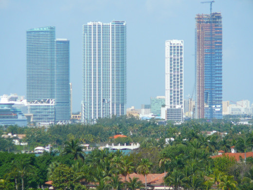 The Biscayne Wall in Downtown Miami, notice the inviting deciduous green vegetation