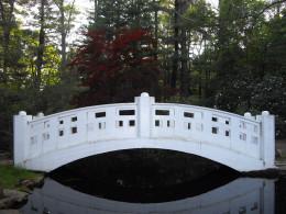 The Moon Bridge in the Oriental Garden