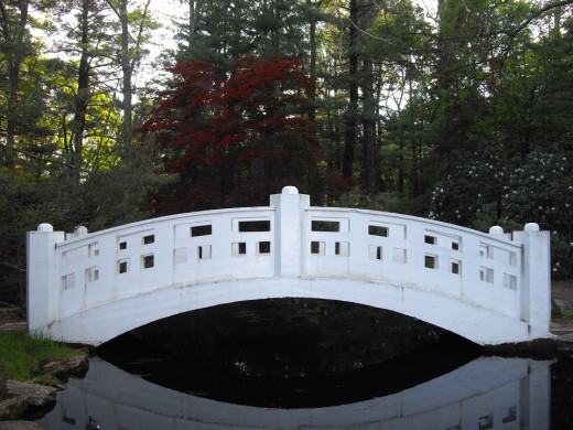 The Moon Bridge in the Oriental Garden
