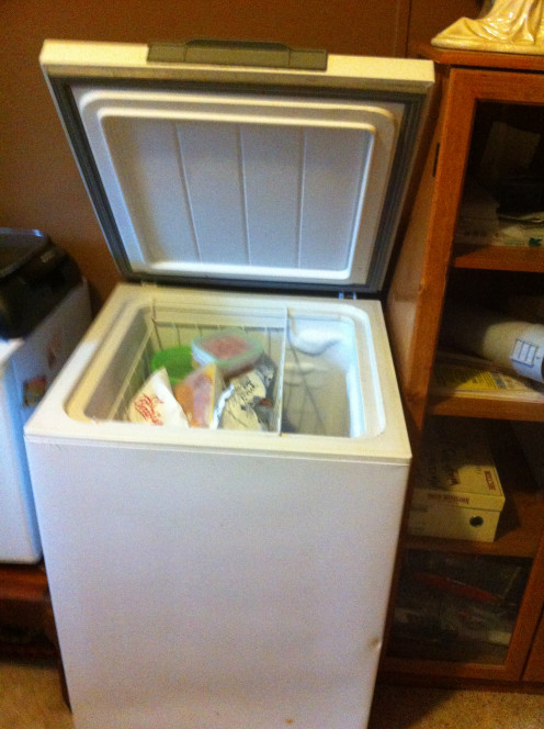 This freezer was purchased at a flea market in Bessemer, Alabama for about 70 percent below cost and it works great.