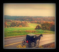 The Amish:   A Special Report