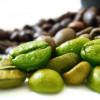 Green Coffee Bean Extract Reviews: Will You Lose Weight?