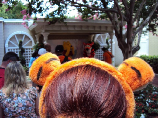 That's me - patiently waiting to get my picture with Tigger & Pooh.