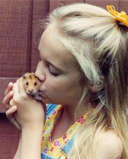 Hamster Love from mootsie  flickr.com