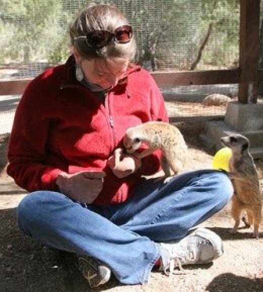 Visitor at Fellow Earthlings' Wildlife Center