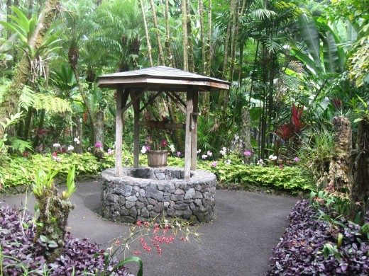 Wishing Well along trail - Hawaii Tropical Botanical Garden Nature Preserve