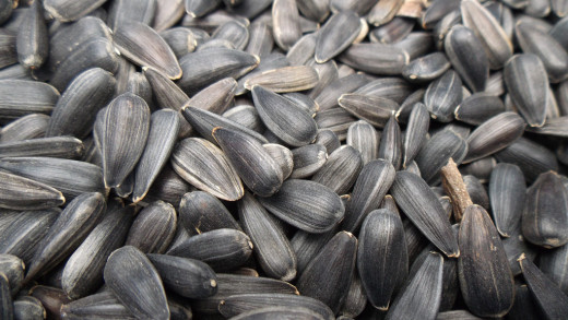 Sunflower seeds contain vitamin E and folate to enhance your mood.