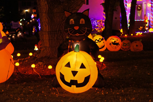 A Jack o Lantern and Black Cat