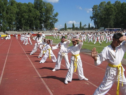 JS Karate Kids during the playground demonstration at Panaad Stadium in Bacolod City