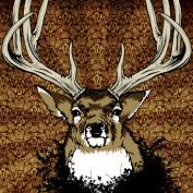 squeak2012 profile image