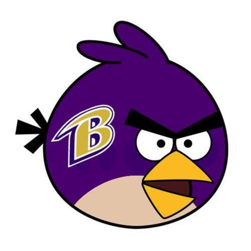 """The future Baltimore Raven's """"Ray Lewis"""" Bird"""
