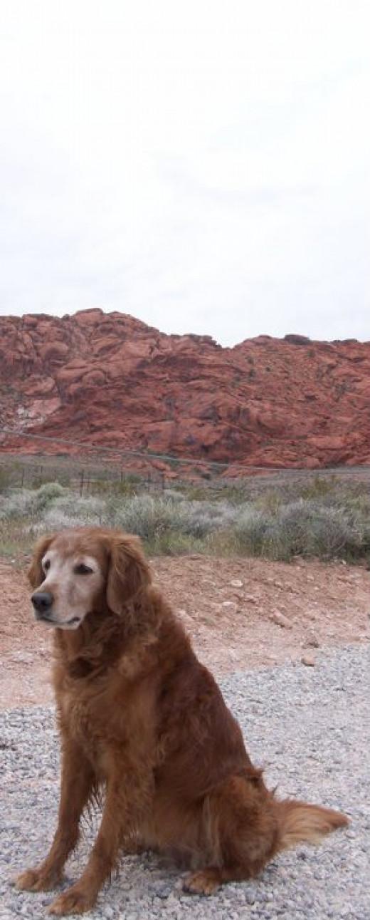 Brandi at Red Rock enjoying a hike.