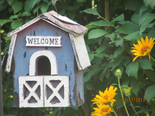 A welcoming birdhouse.